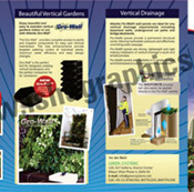 Brochure Designing and Printing